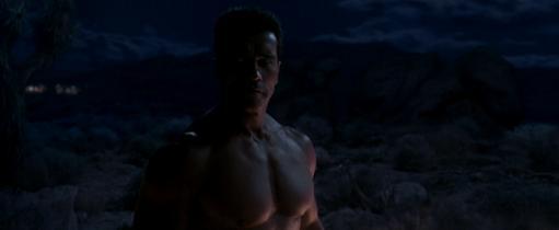 Nekkid Arnie